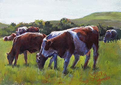 Cows of the Flint Hills #2